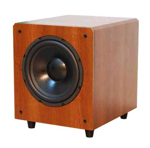 TSW-120 Active Subwoofer